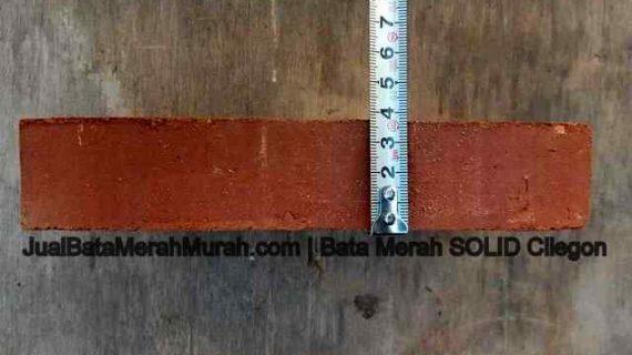 tebal bata merah jumbo